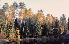 *** (PavelChistyakov) Tags: fuji film 35mm fujifilm provia slide negative analog russia moscow region village countryside autumn lake nature landscape canon camera slr buyfilmnotmegapixels filmisnotdeath