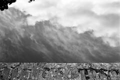 Moulin de la Verrière sur le Gesvres (fred.guidoni) Tags: leicam6 summicron50mmf2 ilfordpanfplus50 reflectaproscan10t vuescan nantes gesvres moulindelaverrire moulindelaverrière