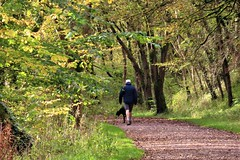 The Monsal Trail, Millers Dale, Peak District (HighPeak92) Tags: disusedrailways trails recreationaltrails monsaltrail millersdale peakdistrict derbyshire canonpowershotsx740hs