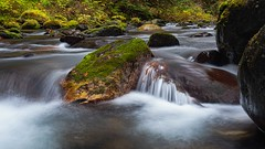 The Flow (Matthew James Lewis) Tags: washingtonstate water washington bigquilvalley bigquilceneriver landscape longexposure rocks moss river olympicpeninsula olympicnationalforest pacificnorthwest peaceful
