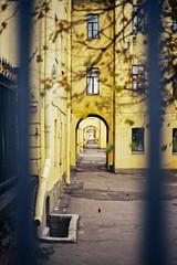 Canon A1   Kodak Color 200 (William Veder) Tags: 35mm 35mmfilm analog canona1 filmisalive filmisnotdead kodakgold200 reise russia russland stpetersburg streetphotography travel williamveder williamvederfotograf