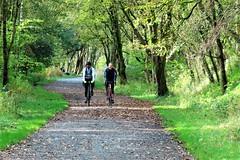 The Monsal Trail, Millers Dale., Peak District (HighPeak92) Tags: disusedrailways trails recreationaltrails monsaltrail millersdale peakdistrict derbyshire canonpowershotsx740hs