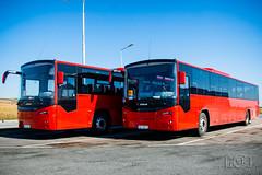 Otokar Territo U (Slobodan Kostić) Tags: otokar territo territou subotica suboticatrans delivery bus serbia new turkey turkish