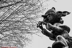 DUENDE PARQUE DEL BUÉN RETIRO-Madrid (FRANCISCO DE BORJA SÁNCHEZ OSSORIO) Tags: duende españa exposure enfoque encuadre exposicion exposición madrid moment flechazo focus focuspoint foco framing love light luz life lovely blackandwhite blancoynegro bw passion photo pasión primavera photostreet park parquedelretiro parquedelbuenretiro spring shot summer streetphoto street instant instante invierno verano vida amor arrow autumn otoño detalle detalles detail details desenfoque disparo divertido delicado delicate dof depthoffield bokeh beauty belleza nature naturaleza nice timeexposure tiempodeexposición temperaturadecolor color colour composition composición colourtemperature
