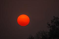 Morning Ópusztaszer (Torok_Bea) Tags: morning sunrise lovely sun tamron tamron150600 ópusztaszer napfelkelte wonderful nikon beautiful fantastic gyönyörű