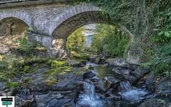 Le pont du quartier Ourdie (https://pays-basque-et-bearn.pagexl.com/) Tags: rivière pont quartier ourdie arette 64 haut béarn pyrénées nature rocher eau extérieur vallée du barétous france coline buch le vert