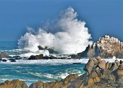 October18Image7410 (Michael T. Morales) Tags: pacificgrove wave rockformation ocean monterey