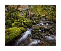 Borrowdale old mill (Ade G) Tags: borrowdale cumbria england keswick lakedistrict landscape leaves locations nature rocks longexposure moss plants river trees water watermill