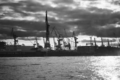 Hafen (ste_he) Tags: hamburg germany deutschland hafen harbour kran crane schwarz weiss black white bw sony ilce7 sel24240 dock cloudy wolkig
