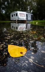 Autumn camping. (Darren Speak) Tags: water caravan reflection leaf autumn