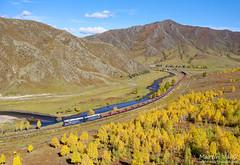 2TE116UD UBTZ, Tunkh - Shatang (Mongolia) (Martin Válek) Tags: rail railway railroad train locomotive zug eisenbahn vlak železnice mongolsko mongolei transmongolianrailway ulaanbaatarrailway kharaa