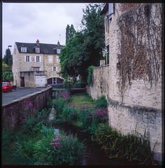 La rivière Nièvre #25 (Paysage du temps) Tags: ville urbanisme rivière maisons houses pierres stones fleurs flowers berges muret wall passerelle