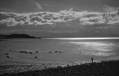 Beach solitude (Mirrorfinish) Tags: criccieth cymru northwales wales sea seascape seaside beach blackandwhite