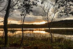 38/52 Ballygawley Lough, County Sligo, Ireland (Marty Cooke) Tags: outdoor outside sligo cosligo countysligo lake lough water sunset irishhistory ireland connacht connaught reflections