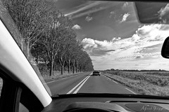 Chasing The Last Corvette (Alfred Grupstra) Tags: car road highway driving transportation traffic speed travel street roadtrip asphalt landvehicle journey outdoors nature multiplelanehighway nopeople landscape sky mirror