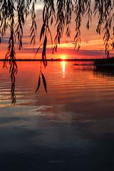 (zedspics) Tags: sunset gyenesdiás magyarország hungary hongarije ungarn plattensee balaton nature zedspics 1910