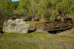 HX00187_2048 (a.marquespics) Tags: wood bridge wooden ponte madeira outside landscape paisagem outdoor sony hx90v 30x zoom zeiss park parque ribeira venda comenda gavião portalegre portugal green verde nature natureza outono autumn fall grass dry seca drought riverine stream tree forest grove