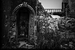 Agréable entrée (Un jour en France) Tags: abandonné entrée monochrome noiretblancfrance noiretblanc canoneos6dmarkii canonef1635mmf28liiusm black nude nue art
