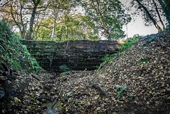 Sacriston. (CWhatPhotos) Tags: cwhatphotos flickr photographs photograph pics pictures pic picture image images foto fotos photography artistic that have which contain near olympus camera micro four thirds omd em1 day nature outside durham north east england uk walk about out green field sky skies clouds cloud sacriston countryside outdoors county autumn 2019 pit colliery dam water old ruin working miners ncb