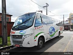 0022 > Global / BR (Pablo Photo Buss) Tags: volare agrale global ônibus bus brasil