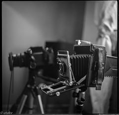 Graflex Crown Graphic +. Mamiya rb67 (Uta_kv) Tags: scannerelsonv550 theanalogclub toronto d76 6x6 mediumformatcamera blackandwhite kiev60 analogcamera film ultrafine400 homedeveloped