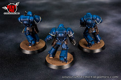 Ultramarines Space Marine Intercessors-07 (whitemetalgames.com) Tags: primaris space marine intercessors ravenguard salamanders ultramarines whitemetalgames warhammer40k warhammer 40k warhammer40000 wh40k paintingwarhammer gamesworkshop games workshop citadel wmg white metal painting painted paint commission commissions service services svc raleigh knightdale northcarolina north carolina nc hobby hobbyist hobbies mini miniature minis miniatures tabletop rpg roleplayinggame rng warmongers wargamer warmonger wargamers tabletopwargaming tabletoprpg
