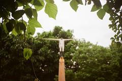 日本阿部乳坊《永恆的旅者-如漂鳥般飛翔》 @池上萬安磚窯廠 (Wennie Guo) Tags: contaxt2 kodakcolorplus200 池上 台東 漂鳥197