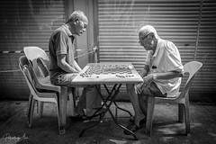 The Game 1 (rcoulstock) Tags: leica monochrom monochrome bw blackandwhite bnw singapore chinatown elderly men local life culture people street streetphotography