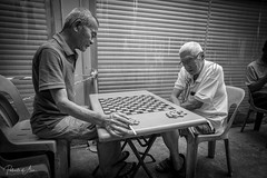 The Game 4 (rcoulstock) Tags: leica monochrom monochrome bw blackandwhite bnw singapore chinatown elderly men local life culture people street streetphotography