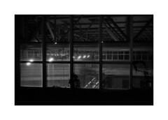 (billbostonmass) Tags: trix 400 film ddx 14ddx800min68f 50mm summicron epson v800 north cambridge massachusetts alewife mbta