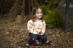 (louisa_catlover) Tags: nationalrhododendrongardens dandenongrangesbotanicgarden garden nature outdoor portrait family child toddler daughter tabby tabitha sitting rock painted ladybird