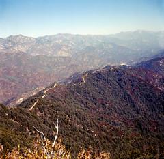 Mt Wilson 02 (skillsnyc) Tags: rolleiflex ektar california nature