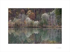 Las formas del otoño (E. Pardo) Tags: otoño autumn herbst árboles trees bäume reflections reflejos spiegelungen colores colors farben gesäusenationalpark steiermark austria