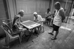 The Game 7 (rcoulstock) Tags: leica monochrom monochrome bw blackandwhite bnw singapore chinatown elderly men local life culture people street streetphotography