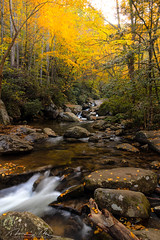 south mountain autumn stream-1.jpg (McMannis Photographic) Tags: photography travel northcarolina fallcolors destination landscapeandnature southmountainstatepark mountainstream autumn blueridge carolinas connellysprings explore foothills mountain nc ncpark ncstatepark southeast tourism