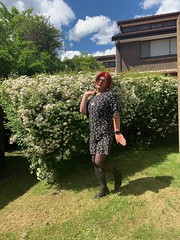 Cece's Spring Dress (2) (rjrgmc28) Tags: adorkable black dork dress eyewear geek girl glasses pantyhose stockings transgender woman aspergirl
