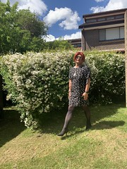Cece's Spring Dress (1) (rjrgmc28) Tags: adorkable black dork dress eyewear geek girl glasses pantyhose stockings transgender woman aspergirl