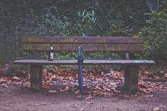 Just meet me on the corner.. (erlingraahede) Tags: bedifferent vsco canon artistic autumn morning park bench goslar