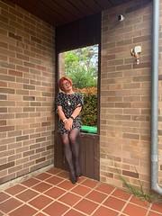 Cece's Spring Dress (5) (rjrgmc28) Tags: adorkable black dork dress eyewear geek girl glasses pantyhose stockings transgender woman aspergirl