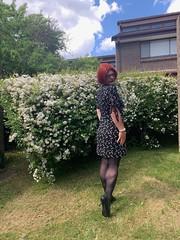 Cece's Spring Dress (3) (rjrgmc28) Tags: adorkable black dork dress eyewear geek girl glasses pantyhose stockings transgender woman aspergirl
