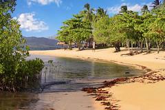 Dos Palmas Island Resort (Arreceffil Island), Honda Bay, Palawan, Philippines (Ray in Manila) Tags: philippines dospalmas ocean sea beach asia southeastasia pacific coconut palm mangrove island paradise palawan hondabay eos650d tree condenast travelleisure resort