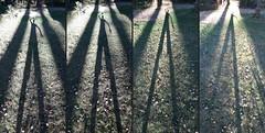 My shadow (kimmy aoyama) Tags: sun shadow ohio oh setting tall light