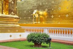 Wat Phra Singh in Chiang Mai 5.9.2019 2119 (orangevolvobusdriver4u) Tags: archiv2019 2019 thailand totallythailand chiangmai norththailand temple tempel wat watphrasingh gold