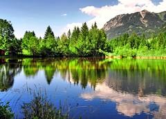 Der Moorweiher bei Oberstdorf (Tobi_2008) Tags: moorweiher teich pond spiegelung reflection berge mountains alpen alps bayern bavaria deutschland germany allemagne germania