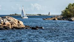 Out sailing (tonyguest) Tags: sailing sail boat yacht water sea seascape rocks karlshamn eneskär blekinge sweden tonyguest folkboat folkbåt swe1274 clouds trees dofstacking
