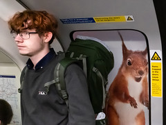 Victoria Line, 2019 (samrodgers2) Tags: tube underground london londonstreetphotography squirrel humour juxtaposition