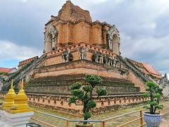 Wat Chedi Luang in Chiang Mai 5.9.2019 2115 (orangevolvobusdriver4u) Tags: archiv2019 2019 thailand totallythailand chiangmai norththailand temple tempel wat watchediluang chedi luang