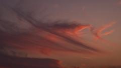 Wolf Hunter ( MBS-.. ) Tags: sky cloud sunset golden hour fuji fujifilm xh1 hunter wolf art imagination