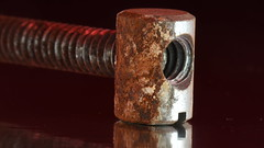 Rust (rq uk) Tags: rquk nikon d750 macro nikond750 afsvrmicronikkor105mmf28gifed 52weeksthe2019edition rust red brown week422019startingtuesdayoctober15201952weeksthe2019edition