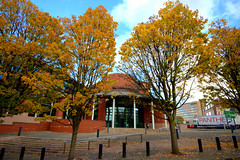 Autumn in Preston by the law courts (Tony Worrall) Tags: preston lancs lancashire city welovethenorth nw northwest north update place location uk england visit area attraction open stream tour country item greatbritain britain english british gb capture buy stock sell sale outside outdoors caught photo shoot shot picture captured ilobsterit instragram photosofpreston autumn fall leaves trees seasonal architecture building lawcourts beauty natural